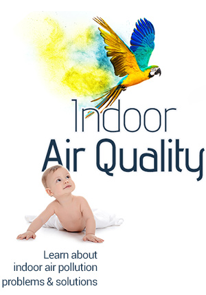 indoor air pollution eGuide